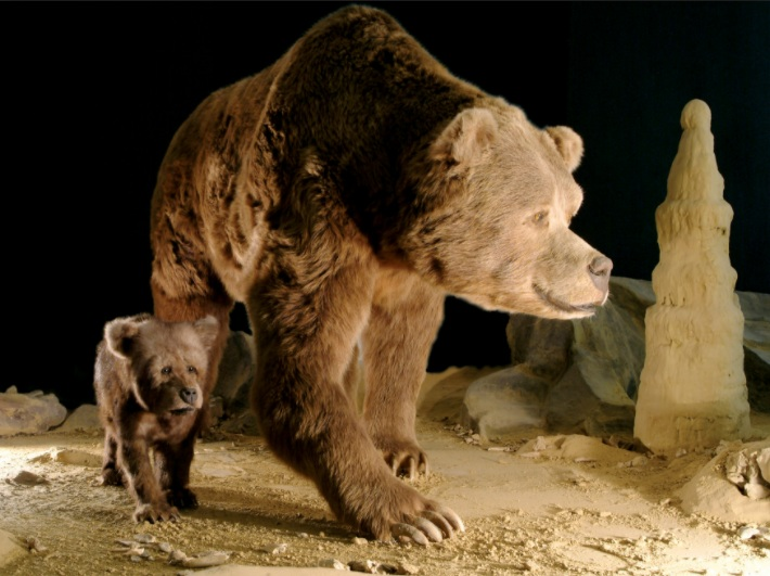 -100 000 лет до н.э. Неандерталец придал длинной кости пещерного медведя вид фаллоса